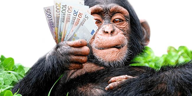 Optionfair – Ihre ersten Trades gehen auf uns! Die Cashback Aktion im Detail